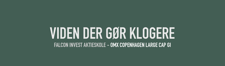 Falcon Invest Aktieskole - OMX Copenhagen Large Cap GI