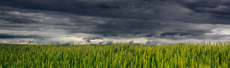 Sorte skyer i horisonten på aktiemarkedet